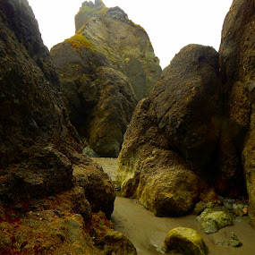 Ruby Beach Rocks by Barbara Clark - Landscapes Beaches ( sand, barren, washington state, boulders, olympic national park, mossy, beach, stones, coastal, rocks, coast )