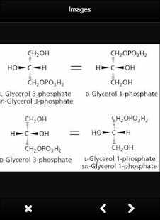 Glycerol Definition Biochemistry - náhled