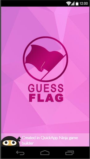 Guess Flag