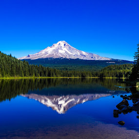 Clear day at Mt. Hood by Jodi Olson - Landscapes Mountains & Hills ( reflection, mountain, trees, lake, reflections, mirror )