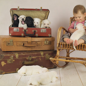 the whisperer by Diána Barócsi - Babies & Children Child Portraits ( puppies, dogs, suitcase, baby, toddler, boy, kid,  )