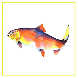 a water colour painting of a rainbow trout
