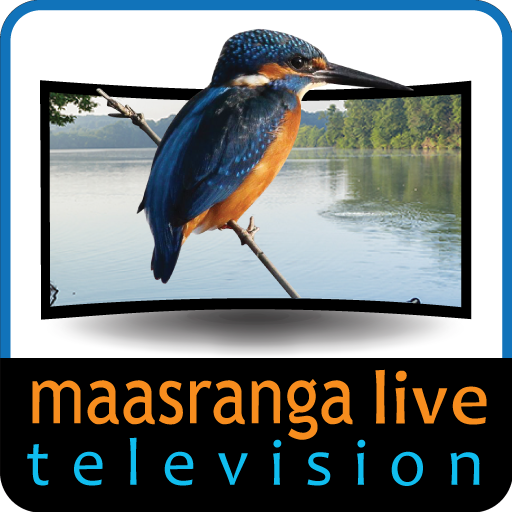 Maasranga TV HD file APK for Gaming PC/PS3/PS4 Smart TV