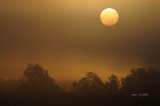 Photo: Morgensonne im Frühnebel  Morgenstunde hat Gold im Munde.