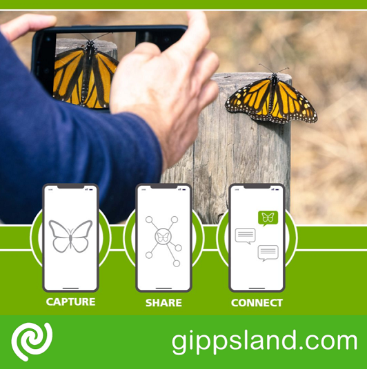 Be a part of the Great Southern Bioblitz (GSB) in 2021 for its second year running by get get involved in the Southern Hemisphere's largest citizen science activity in 2021!