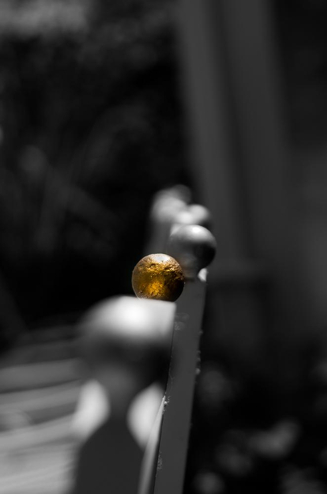..gold.. di enricosottocorna