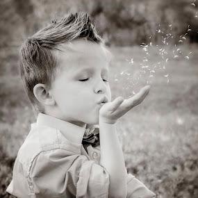Wishes  by Stephanie Halley - Babies & Children Child Portraits ( child, summer, portrait )