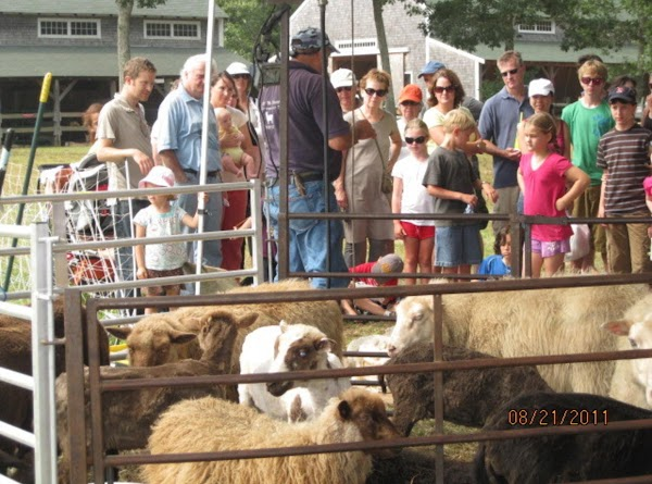 Annual Agricultural Fair  -2011- The Best Yet! Recipe