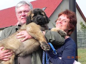Photo: Viko lebt jetzt in Fürstenwalde - Brandenburg