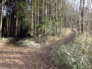 右に巡視路(左へ)