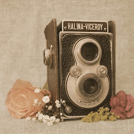 cam1 by Heather Catherine - Artistic Objects Still Life ( vintage camera flowers rose, vintage camera flowers, vintage, vintage roses camera flowers rose, vintage camera )