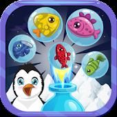 Frozen Antarctic Penguin