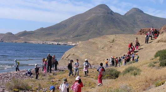 Las Escuelas Deportivas Cajamar vuelven a la actividad