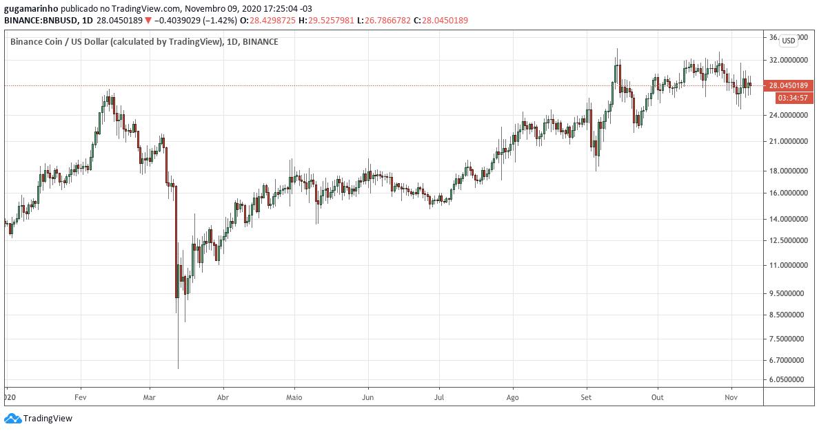 Gráfico do preço da Binance Coin em 2020, que chegou a dobrar de preço. Fonte: TradingView.