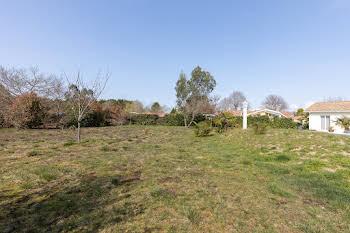 Terrain 1352 m2
