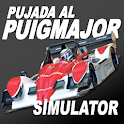 Puig Major Car Racing Simulator icon