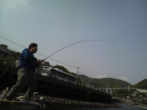 Photo: なぬー! フィッシュ!