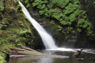 Photo: Goldstream Falls