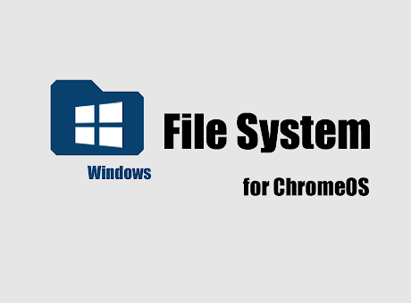 File System for Windows