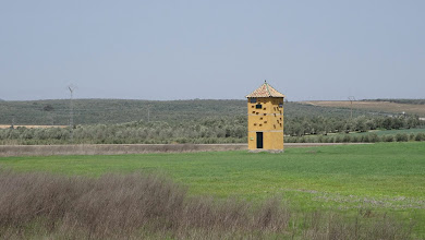 Photo: Not so much a dovecote as a bird hotel