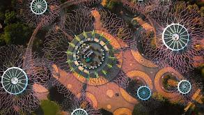 Biomes & Rebuilds thumbnail