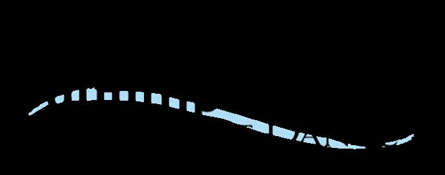 Salimpour School Logo