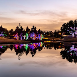 addison lights by Bert Templeton - Public Holidays Christmas ( addison, texas, vitruvian, christmas, lights,  )