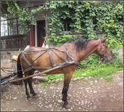 Photo: Turda - Str. Salinelor - 2018.07.12