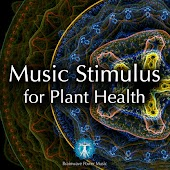 Music Stimulus for Plant Health