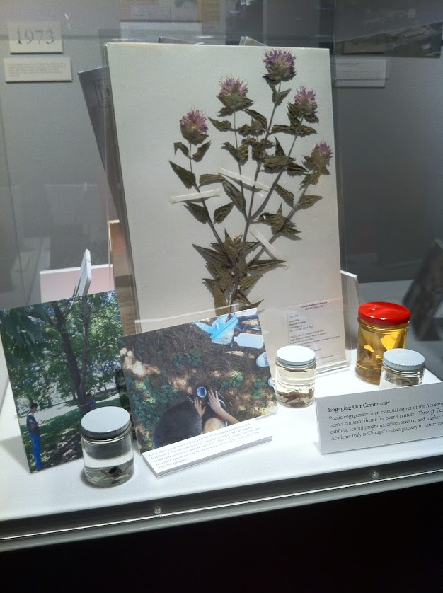 Specimens and photos on display in Chicago's Explorers exhibit