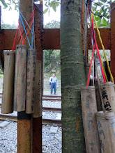 Photo: 到處都掛著竹筒祈福