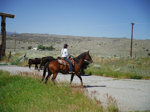 Photo: Day 19 Dubois to Riverton WY 79 miles 1410' climbing: