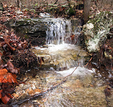 Photo: Small Falls - Rush woods