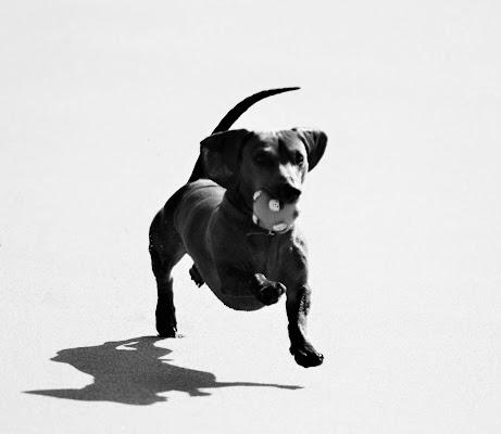 Corri!!! di AGATA