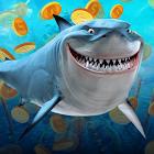 Shark of Luck