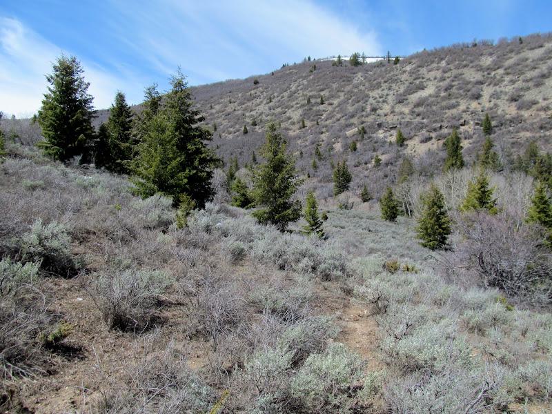 Photo: Approaching the next ridge