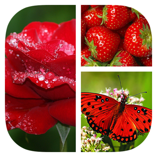 Photo Collage Grid