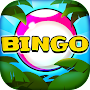 Video Bingo Itacare APK icon