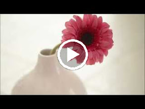 Video: A. Vivaldi  RV 674   Piango, gemo, sospiro e peno [cantata] for alto   b.c. - (spurious)   C. Calvi -