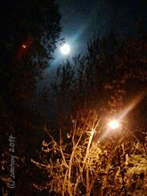 Photo: The beautiful moon that I love is shining, the red moon..