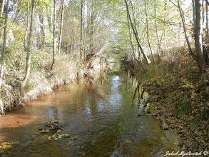 Photo: Potok je částečně regulovaný, ale v jeho dně se nacházejí granátonosné štěrky (24.10. 2015).