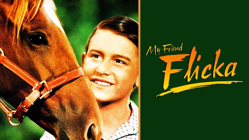 watch thunderhead son of flicka online free
