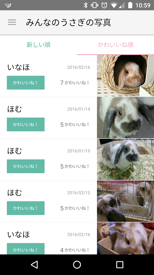 RabbitGarden -Easy breeding-- screenshot