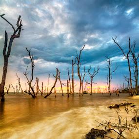 1 path 1 destination  by Najmi Rooslan - Landscapes Sunsets & Sunrises ( gnd, canon, cokin, kelanang, blue hour, 60d, malaysia, storm, tamron, eos, tamron 11-18mm, sunset, cpl, hoya, morib )
