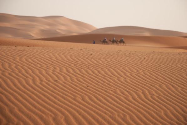 Sahara di edo.vigoni