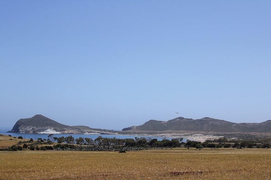 Los Genoveses, una de las bahías más bellas del Parque Natural Cabo de Gata-Níjar.