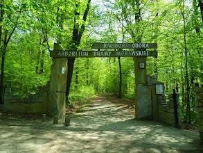 Photo: C6080023 Obora - Arboretum Bramy Morawskiej - wejscie