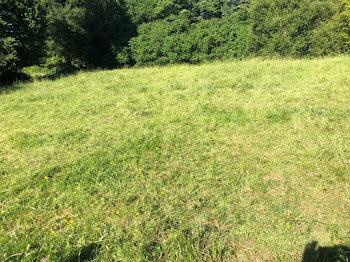 terrain à Saint-Maurice-des-Lions (16)
