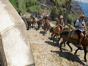 Photo: You can ride a donkey up the hill from the ferry