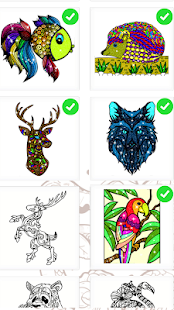 Animals Paint By Number Coloring Book